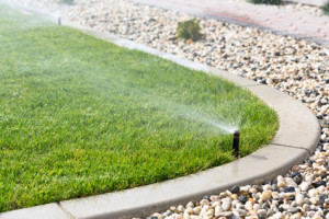 Our lawn sprinkler company can answer your February sprinkler maintenance questions.