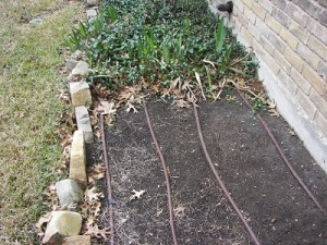 pearson_mar2014-3_drip-irrigation-300x225