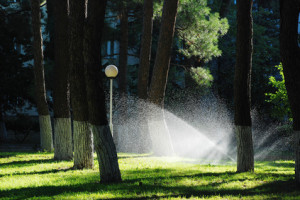 We are here to answer all of your April Frisco lawn sprinkler repair and installation questions.