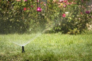 Contact the licensed professionals at Pearson Sprinkler Co for your West Plano sprinkler repairs