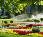 Sprinkler system is watering the lawn. | Pearson Sprinkler Co.