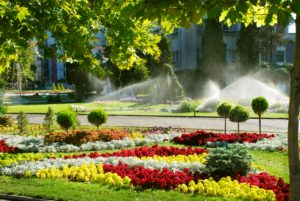One Of The Easiest And Most Cost Effective Ways To Maintain A Healthy Garden Or Lawn Is With Water Irrigation System Eliminates